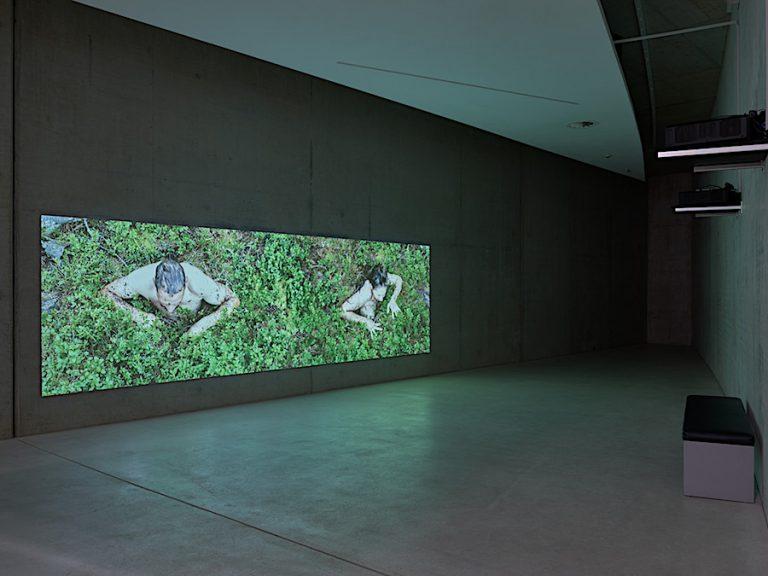 Exhibition Taking Root KIT Düsseldorf, Katrina Neiburga, Jurriaan Benschop